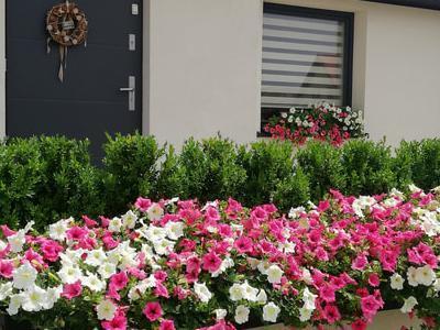 zdjęcie drzwi wejściowych do domu 2